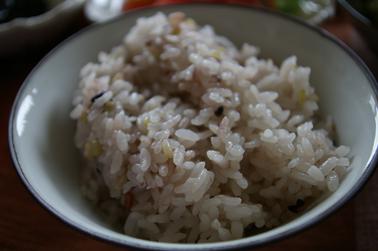 十六穀米 (2010-06-14)