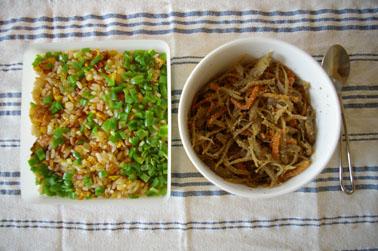 炒飯ときんぴらごぼう (2011-01-27)