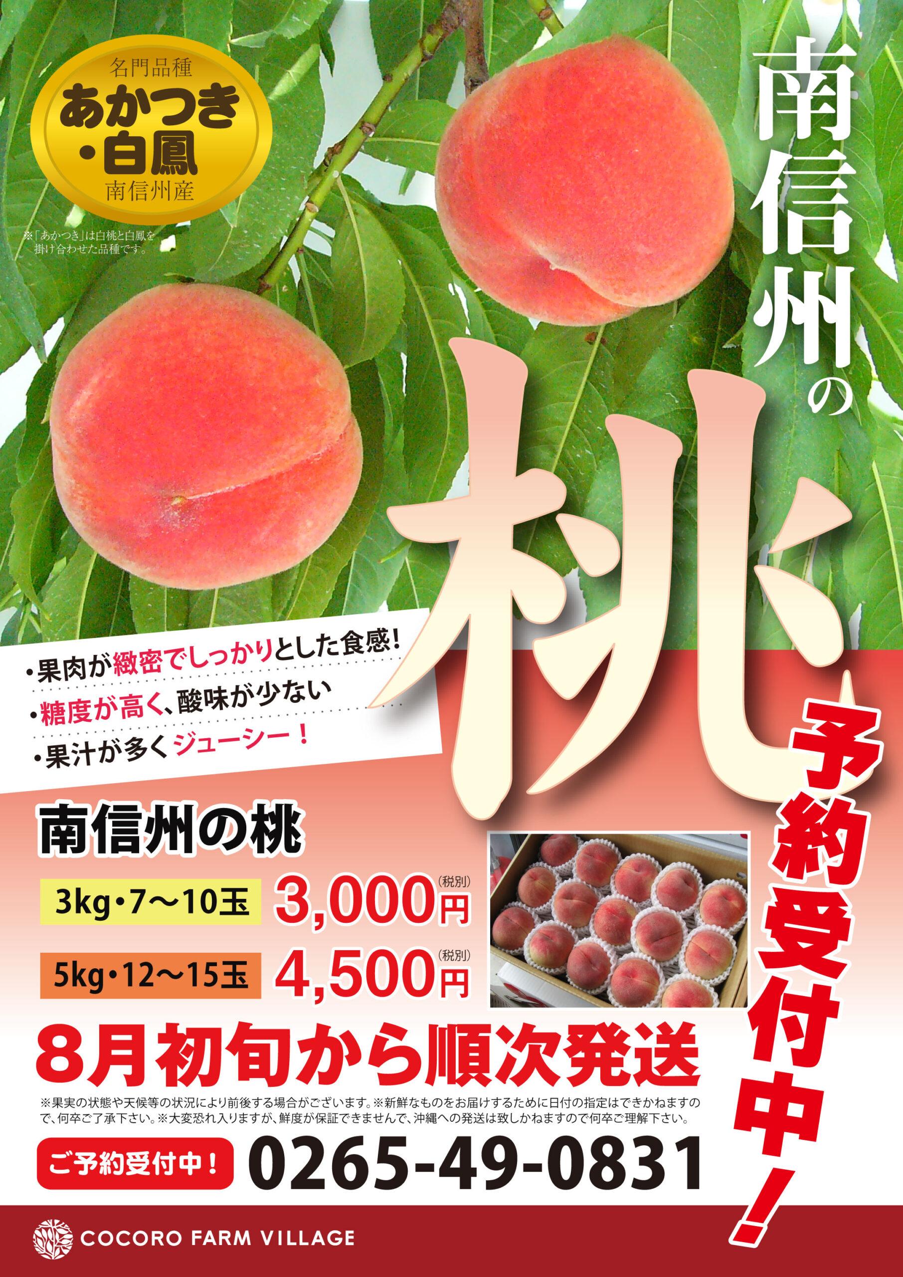 チラシ制作 桃のフライヤー